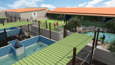 New Seabird Hospital South Africa